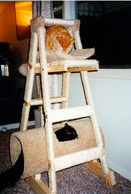 Домик для кошки своими руками: мастер-класс