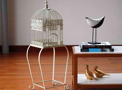Декоративная клетка для птиц: лучшая дизайнерская находка