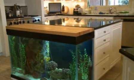 Как стильно вписать аквариум в интерьер кухни: примеры аквариумного дизайна
